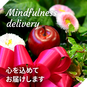 Mindfulnessdelivery